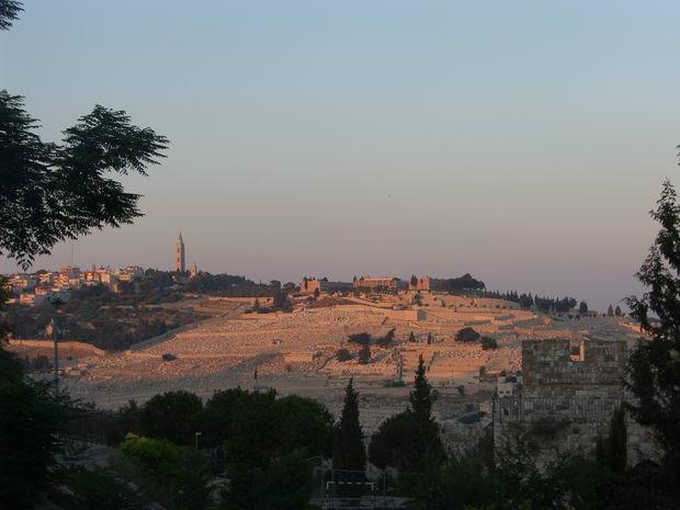 Маслиничная гора, Израиль