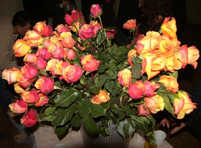 розы па