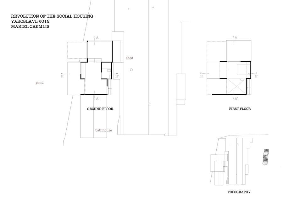 Mariel cremlis social transforming house on the pond for Design criteria of pond
