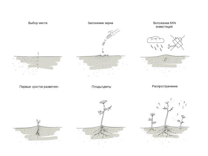 «ЛЮТОВ КОКТЕЛЬ» или «СоциальныйМикс» / 3 / Воркшоп «Rural Urbanism» «Сельский Урбанизм»